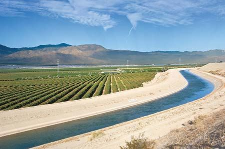 Coachella Canal and farm crop rows