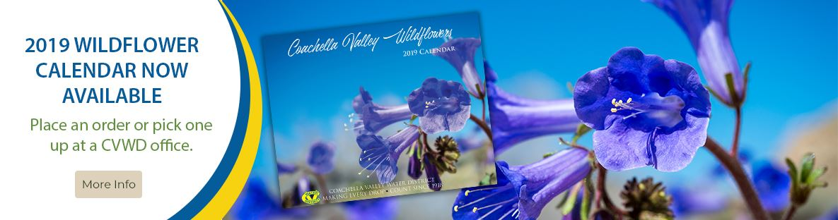 181312 2019 Wildflower Calendar Now Available