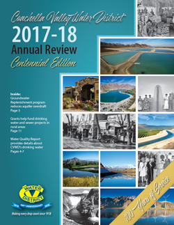 Annual Review 2017-18