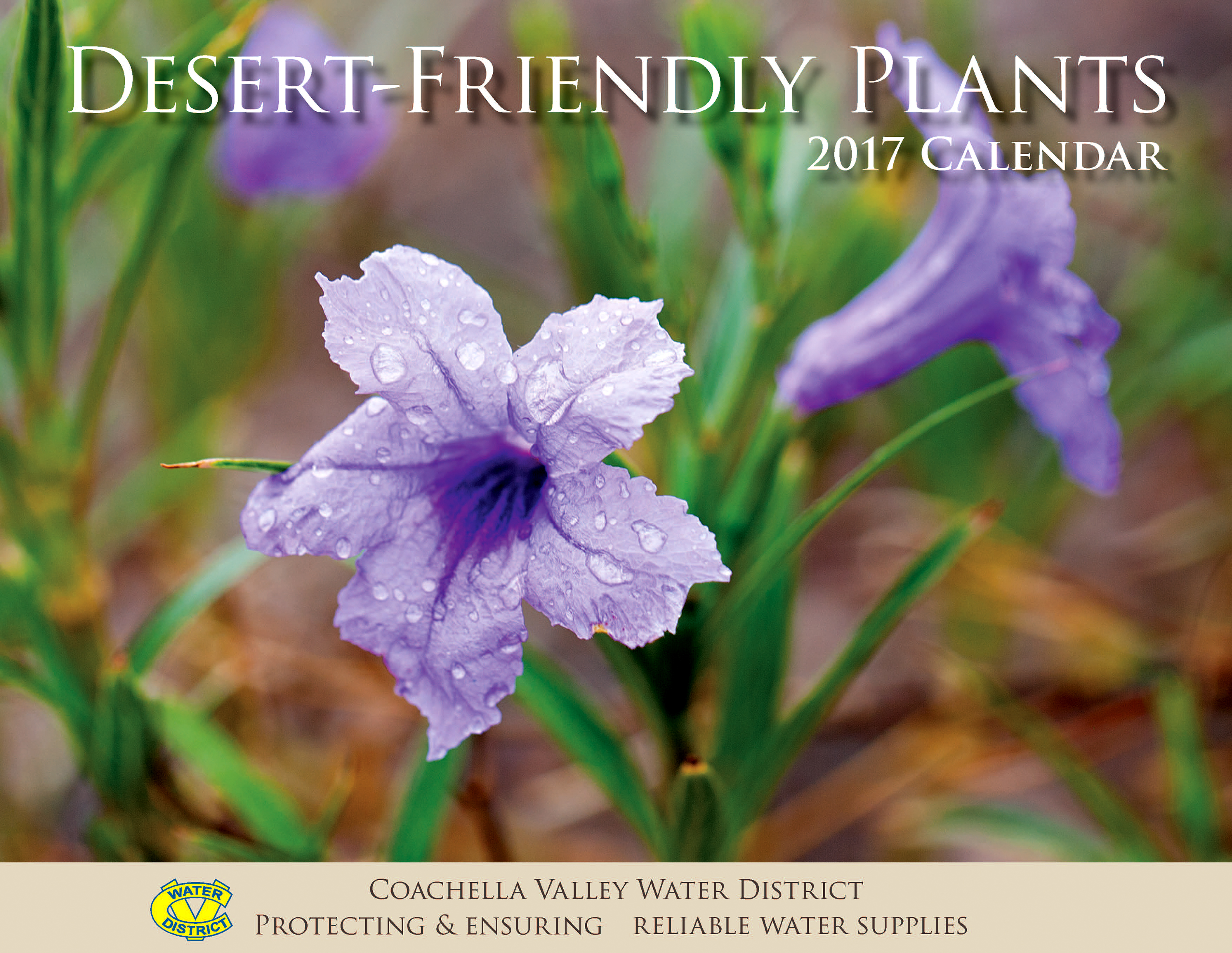 2017 Desert-Friendly Calendar Cover